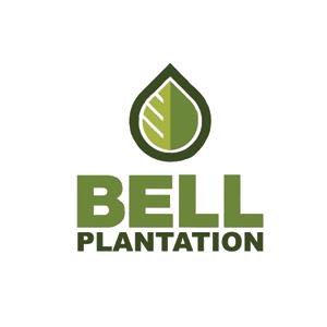 bell-plantation